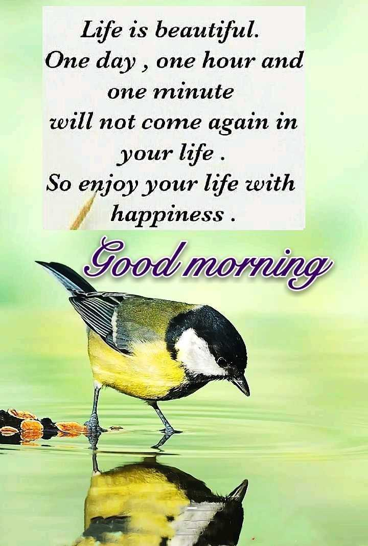 🌞 Good Morning🌞 - Life is beautiful . One day , one hour and one minute will not come again in your life . So enjoy your life with happiness . Good morning - ShareChat