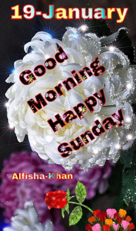🌞 Good Morning🌞 - 19 - January Good Morning Happy Sunday Alfisha - Khan - ShareChat