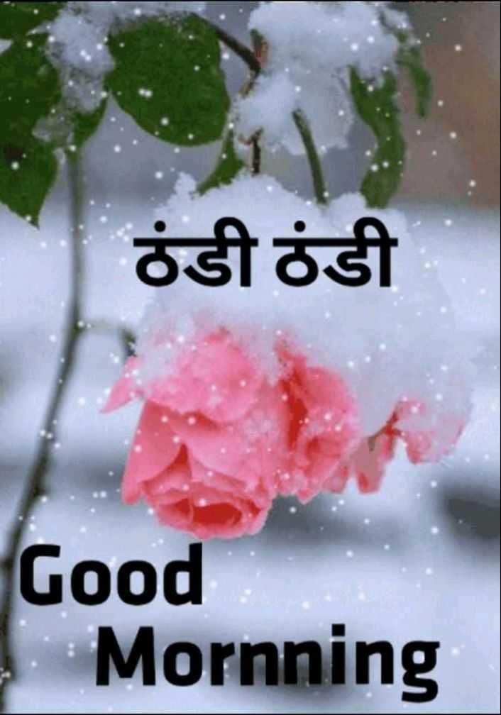 🌞 Good Morning🌞 - ठंडी ठंडी Good Mornning - ShareChat