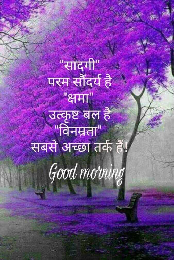 🌞 Good Morning🌞 - सादगी परम सौंदर्य है । क्षमा उत्कृष्ट बल है । विनम्रता सबसे अच्छा तर्क हैं ! Good mornin - ShareChat