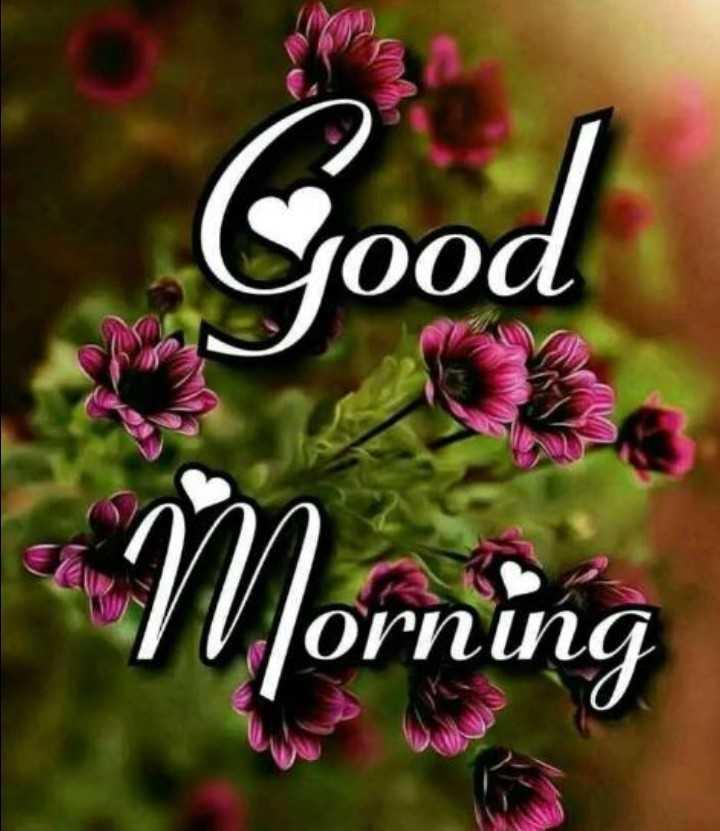 Good morning - 00а Orппа - ShareChat