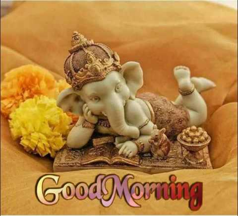 Happy বুধবার🥳 - Good Morning - ShareChat