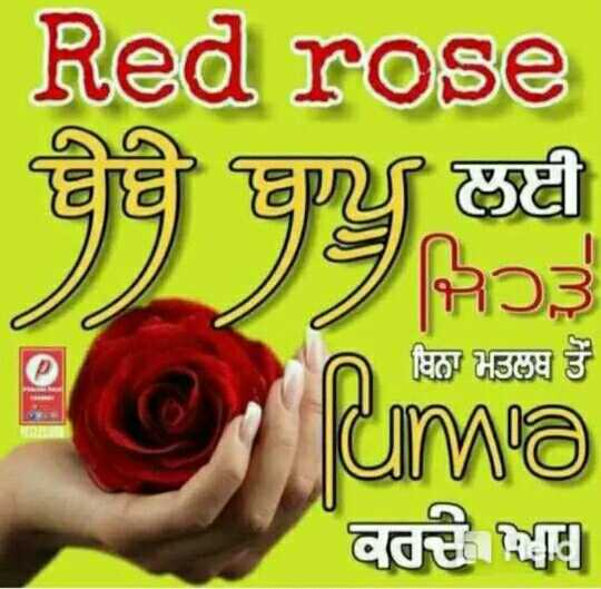 🌹Happy Rose Day - Red rose ॥ ਲਈ ਬੇਬੇ ਜਿਹੜੇ ਬਿਨਾ ਮਤਲਬ ਤੋਂ ema ਕਰਦੇ ਆ - ShareChat
