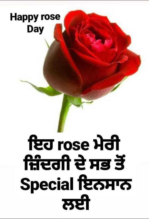 🌹Happy Rose Day - Happy rose Day ਇਹ rose ਮੇਰੀ ਜ਼ਿੰਦਗੀ ਦੇ ਸਭ ਤੋਂ Special ਇਨਸਾਨ ਲਈ - ShareChat
