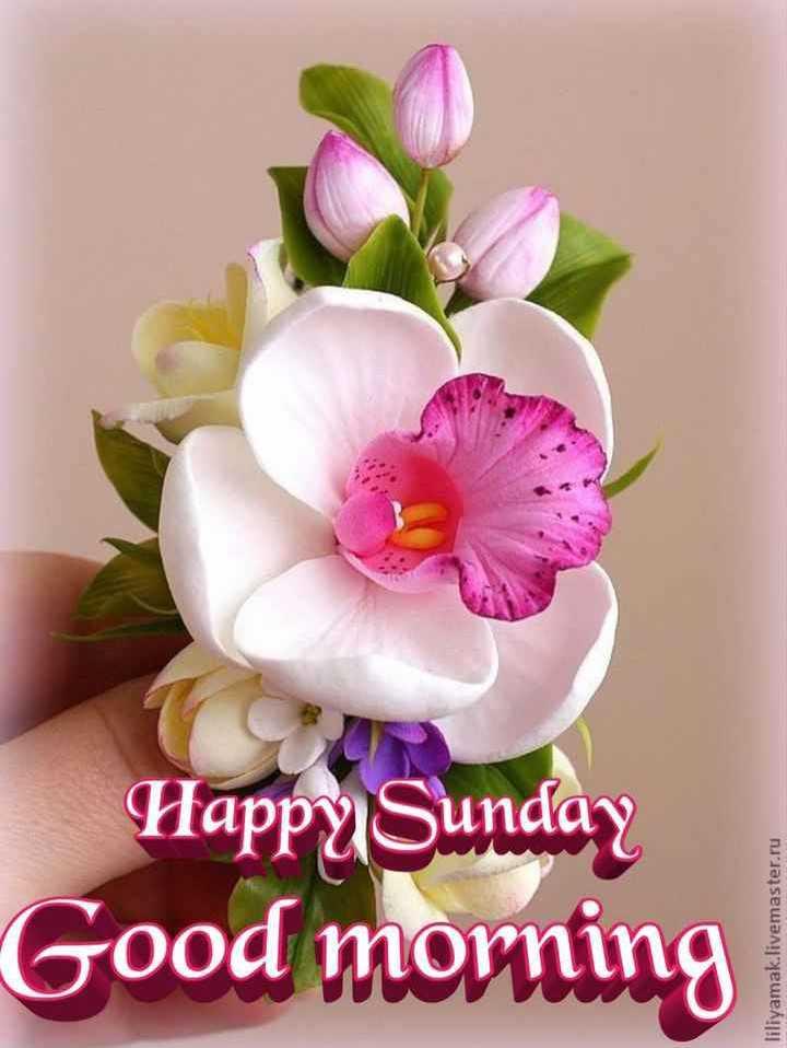 Happy Sunday शभकमनए एव सवचर