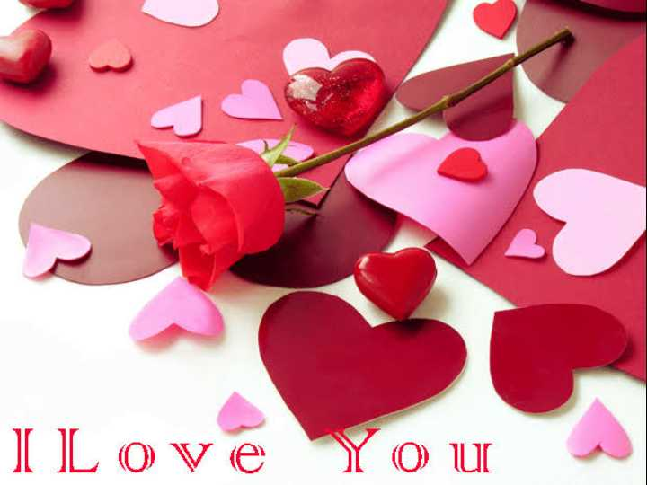 🌹 I Love You - I Love You - ShareChat