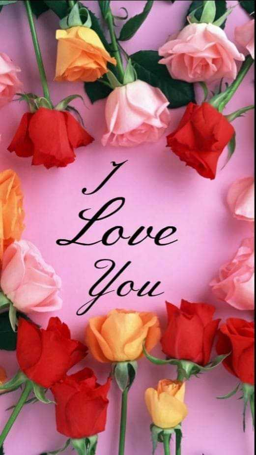 🌹 I Love You - 0 - ShareChat