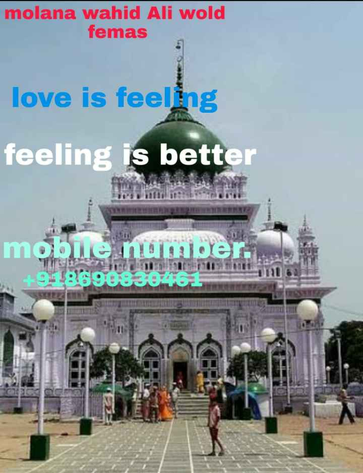 🏏 MS ਧੋਨੀ - molana wahid Ali wold femas love is feeling feeling is better mobile number . HOL186908302161 IT - ShareChat