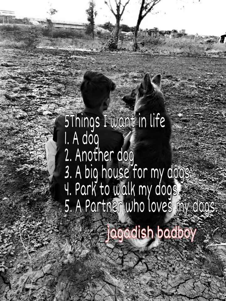🎼SINGING - 5Things I want in life 1 . A dog Y 2 . Another doo 3 . A big house for my doos 14 . Park to walk my dogs . 5 . A Partner who loves my doos Jagadish badboy - ShareChat