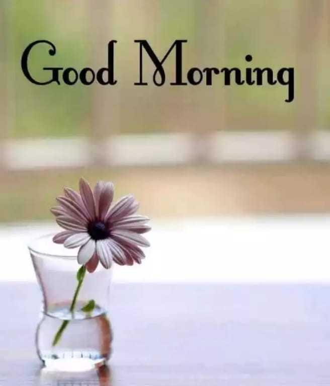 📜 Whatsapp स्टेटस - Good Morning ind - ShareChat