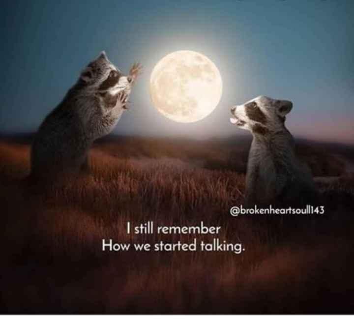 🤳Whatsapp DP - @ brokenheartsoull143 I still remember How we started talking . - ShareChat
