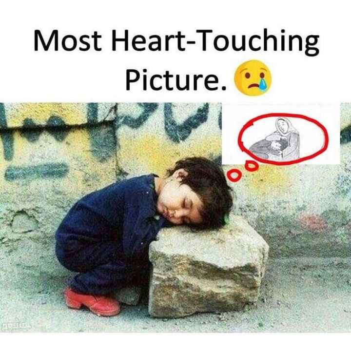😍 awww... 🥰😘❤️ - Most Heart Touching Picture . - ShareChat