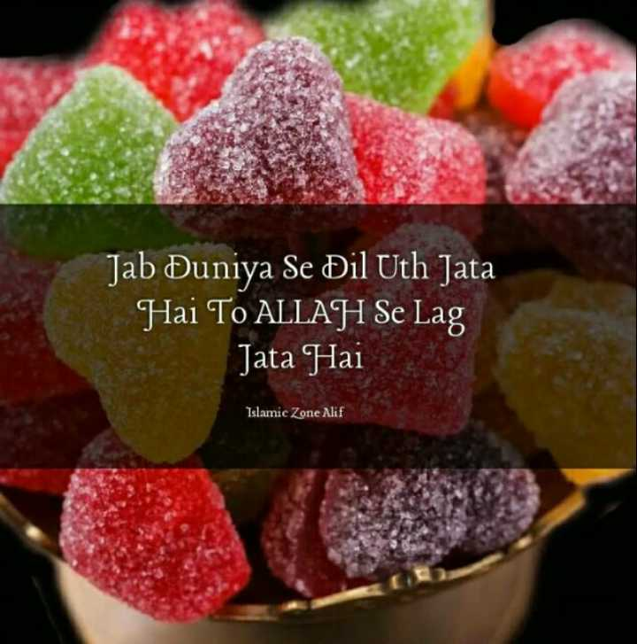 🌷beshaq 🌷 - Jab Duniya Se Dil Uth Jata Hai To ALLAH Se Lag Jata Hai Islamic Zone Alif - ShareChat