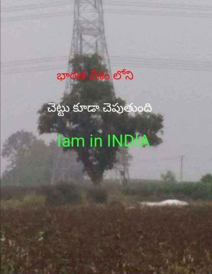 bharat matha - భారం లోని చెట్టు కూడా చెపుతుంది lam in INDA - ShareChat