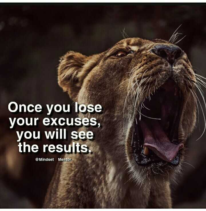 cat lover🐈 - Once you lose your excuses , you will see the results . @ Mindset Mentor - ShareChat