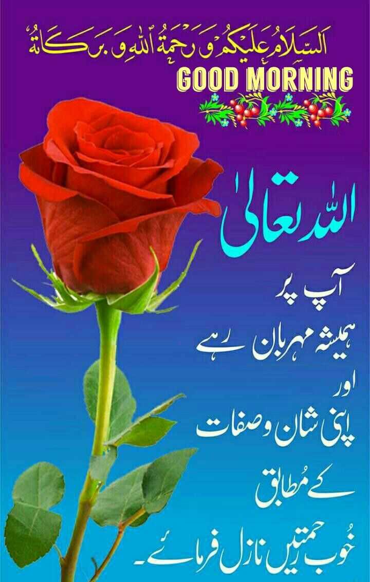 Deeniyaat - السلام عليكم و رحمة الله و بركا GOOD MORNING م ہربان ہے اپنی شان و صفات کے مطابق وبتیں نازل فرمائے ۔ - ShareChat