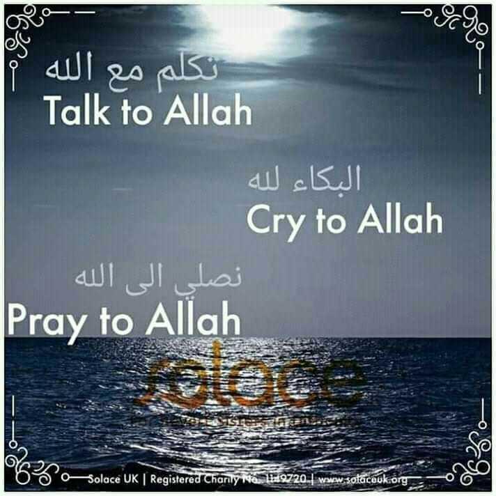 deen__se__duniya - تكلم مع الله 2 Talk to Allah البكاء لله Cry to Allah نصلي إلى الله Pray to Allah Solace UK Registered Charly 9720 . www . sotaceuk . org - ShareChat