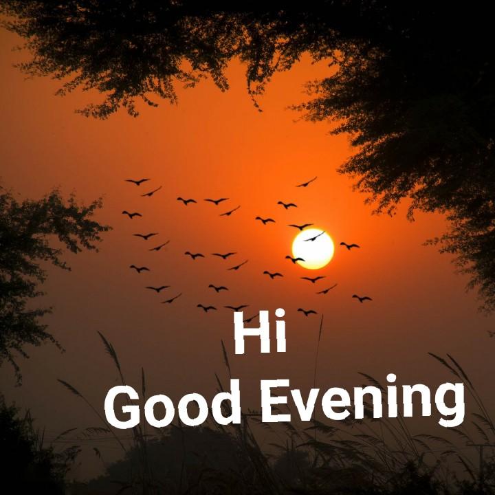 🌜 शुभ संध्या🙏 - Hi Good Evening - ShareChat