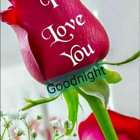 🌑শুভ রাত্রি - Jove You Goodnight - ShareChat