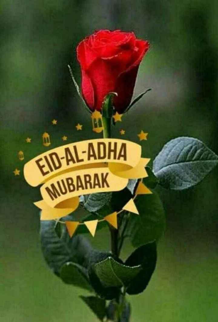 🕋#eid mubarak#🕋 - FID - AL - ADHA MUBARAK - ShareChat