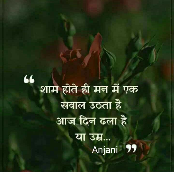 ☝ मेरे विचार - शाम होते ही मन में एक सवाल उठता है आज दिन ढला है या उम्र . . Anjani 99 - ShareChat