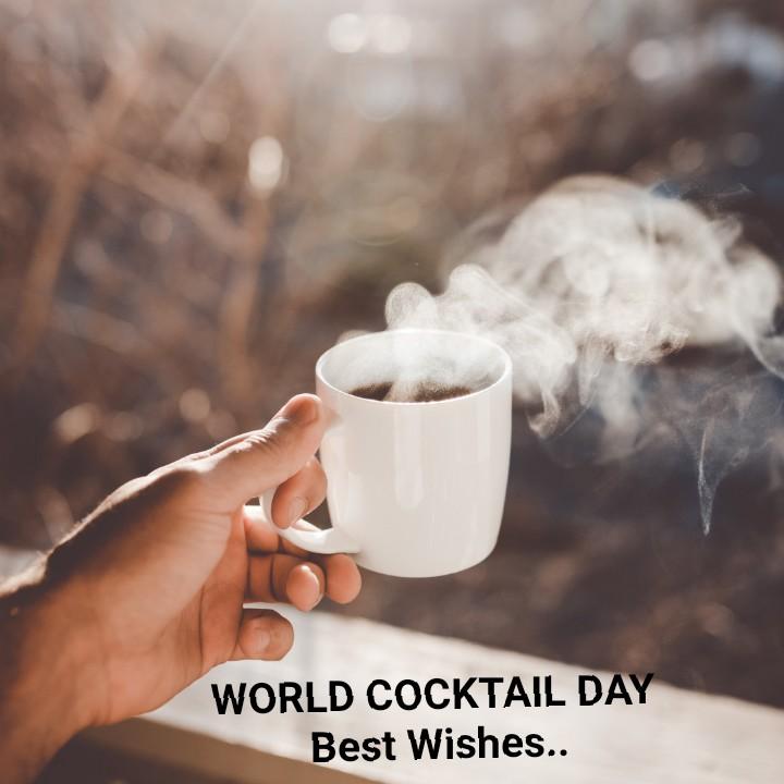 🍸వరల్డ్ కోక్ టైల్ డే🍹 - WORLD COCKTAIL DAY Best Wishes . . - ShareChat