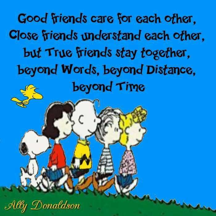 friends - Good friends care for each other , Close friends understand each other , but True friends stay together , beyond Words , beyond Distance , beyond Time Ally Donaldson - ShareChat