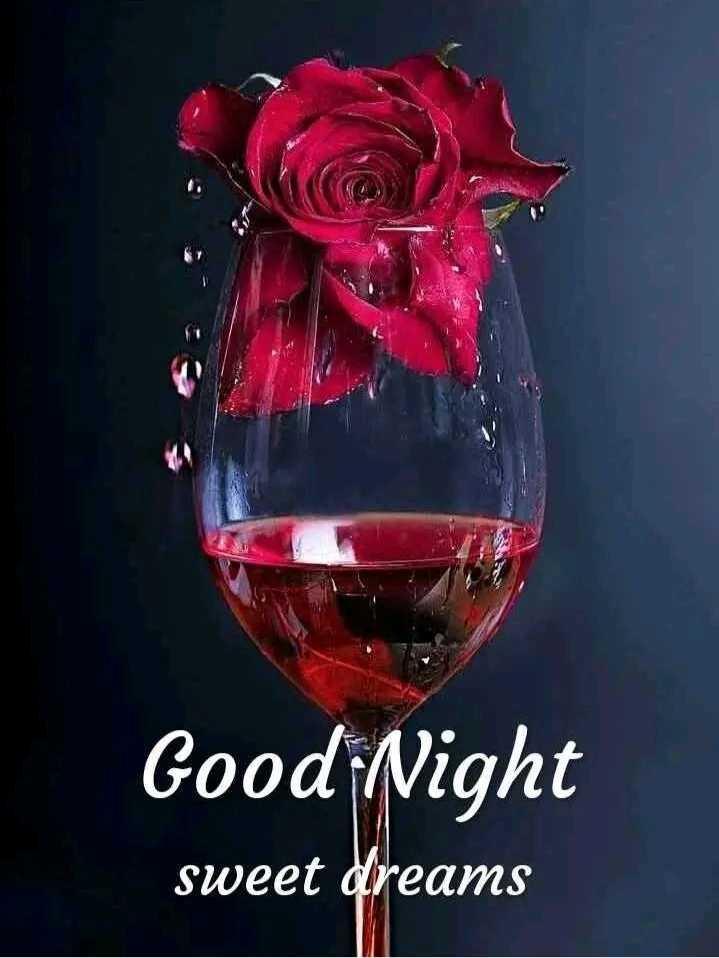 g😴😴d night - Good Night sweet dreams - ShareChat