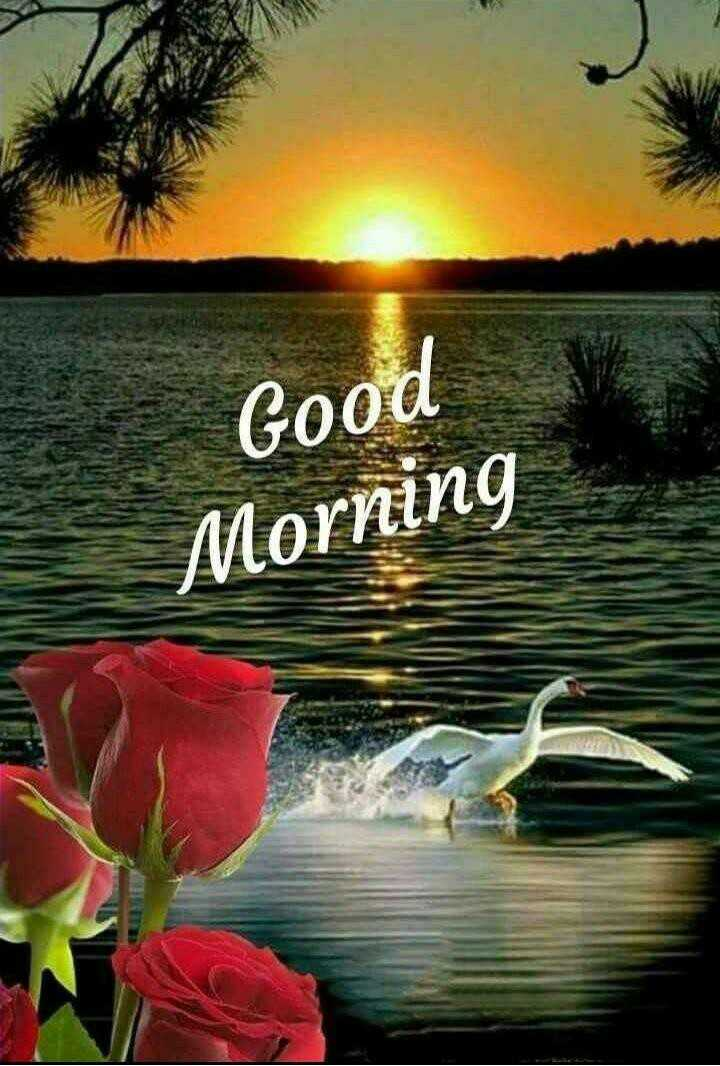 gm - Good Morning - ShareChat