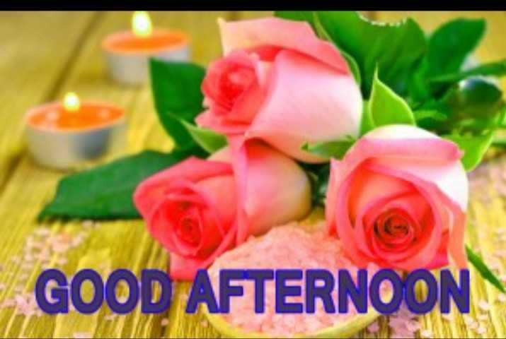 🌹good afternoon🌹 - GOOD AFTERNOON - ShareChat