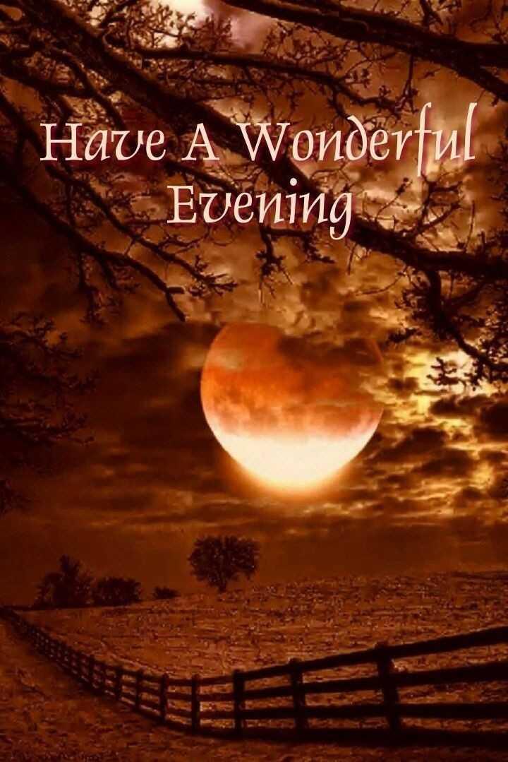 goodevening - Have A Wonderful Evening - ShareChat