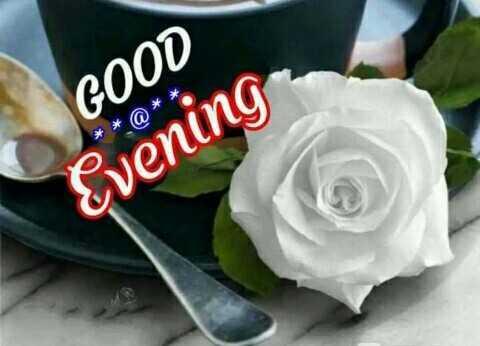 good evening 💗 - * a * * GOOD Evening - ShareChat