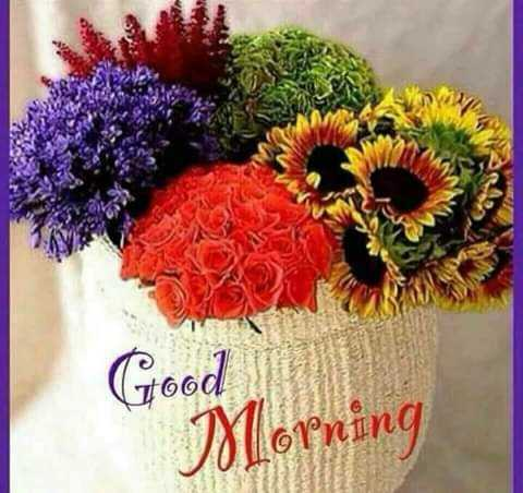 good morning ......... - Good Morning - ShareChat