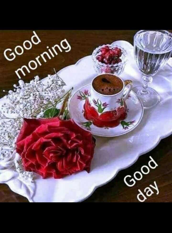 good morning - Good morning Good day - ShareChat