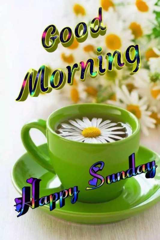 good morning  - Good Morning Sunday Happy - ShareChat