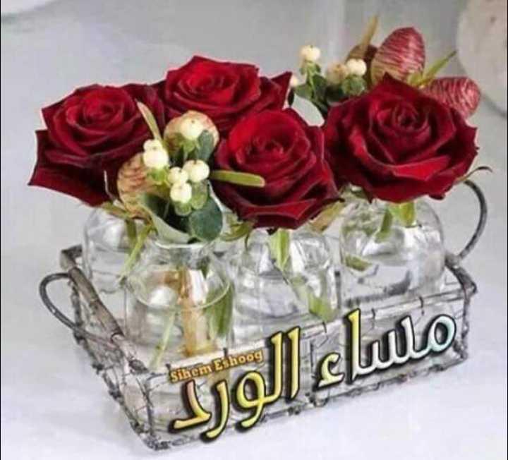 💖good morning💖 - - Sihem eshoog مساء الورد - ShareChat