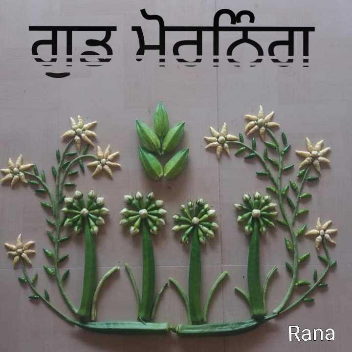 good morning 😘😘😘😘 - ਗੁਡ ਮੋਰਨਿੰਗ Rana - ShareChat