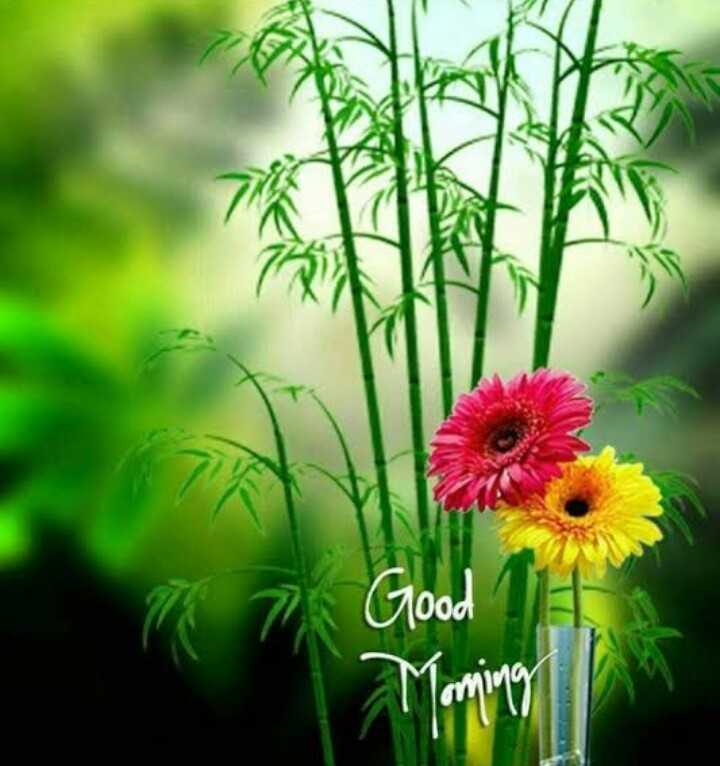 💓good morning 💓 - Good - ShareChat