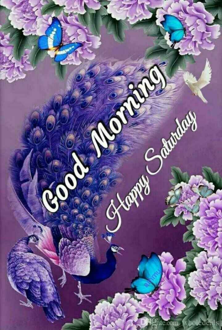 💞good morning 💞 - alimy Hgate . com vbou Good Morning Happy Saturday - ShareChat
