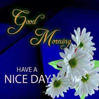good morning friends.. - Morning orning с HAVE A NICE DAY - ShareChat