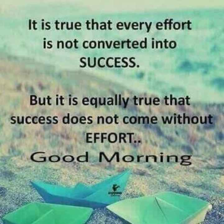 good morning ji - It is true that every effort is not converted into SUCCESS . But it is equally true that success does not come without EFFORT . . Good Morning - ShareChat