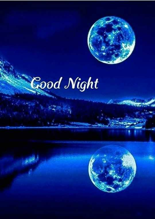 🌹🌹 good night 🌹🌹 - * Good Night - ShareChat