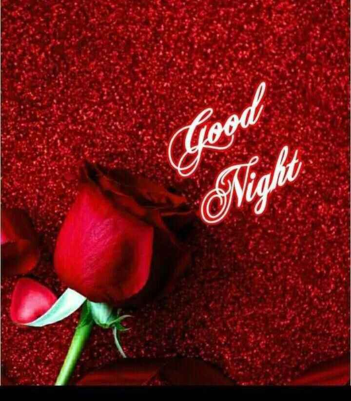 good night 🌺🌺 - Loon Night - ShareChat
