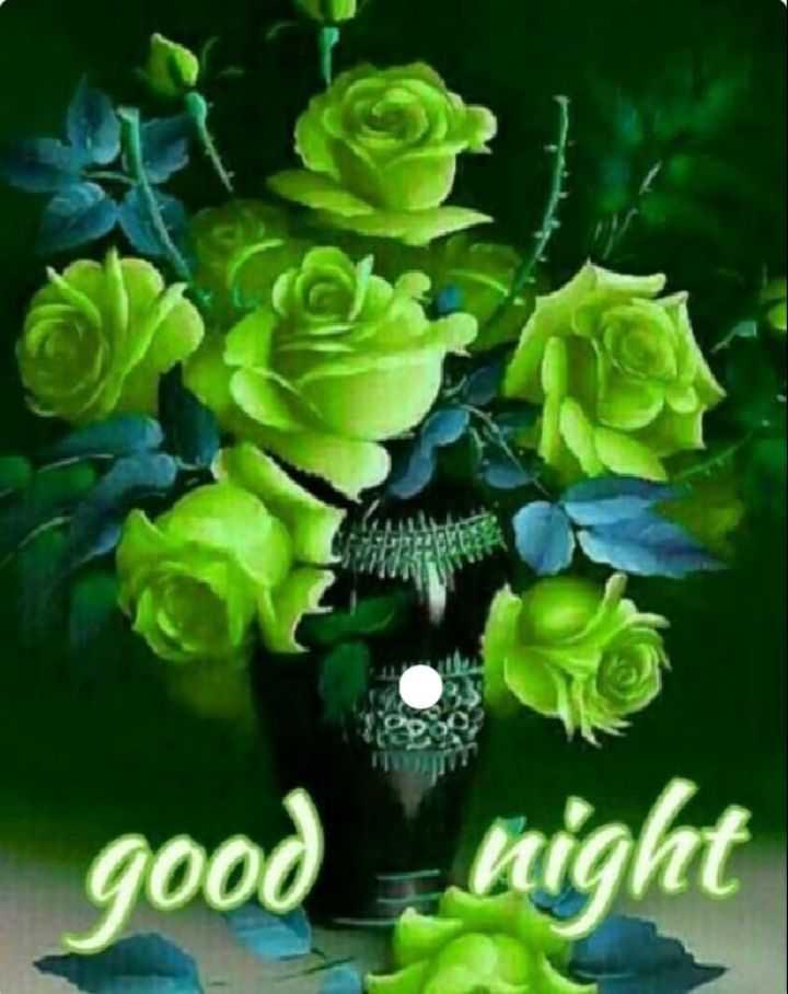 good night💐 🌸 - good night - ShareChat