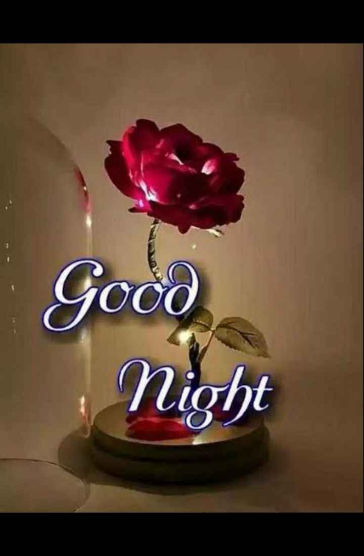 😴😴😴good night 😴😴😴 - Good Night - ShareChat