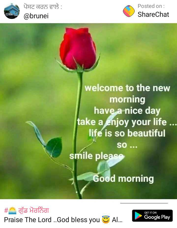 🌞gud gud vali mrng 🌞 - ਪੋਸਟ ਕਰਨ ਵਾਲੇ : @ brunei Posted on : ShareChat welcome to the new morning have a nice day take a Enjoy your life . life is so beautiful SO smile please Good morning GET IT ON # * da Hafod Praise The Lord . . God bless you AL . . . Google Play - ShareChat