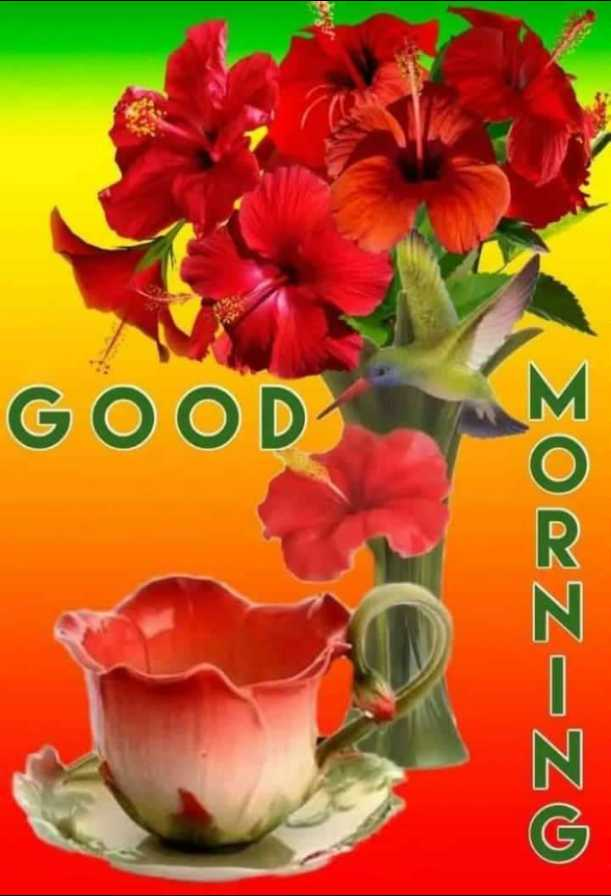 🌞gud gud vali mrng 🌞 - ΣOEZZ = ZZO GOOD - ShareChat
