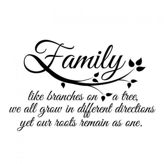 happy family day💕 - Family like branches on , a tree , we all grow in different directions yet our roots remain as one . - ShareChat