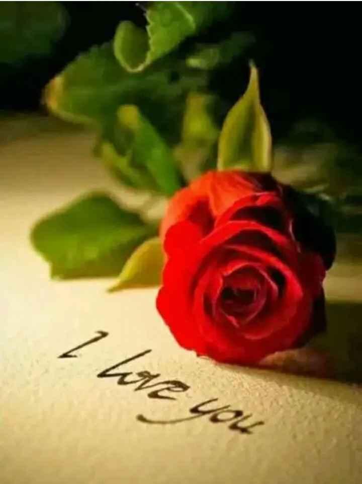 🌸🌸i love you babu🌸🌸 - I love you - ShareChat