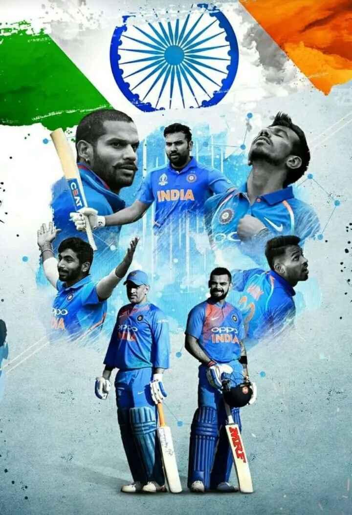 india 🇮🇳 - CAT INDIA - ShareChat